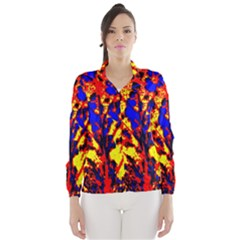 Fire Tree Pop Art Wind Breaker (women)
