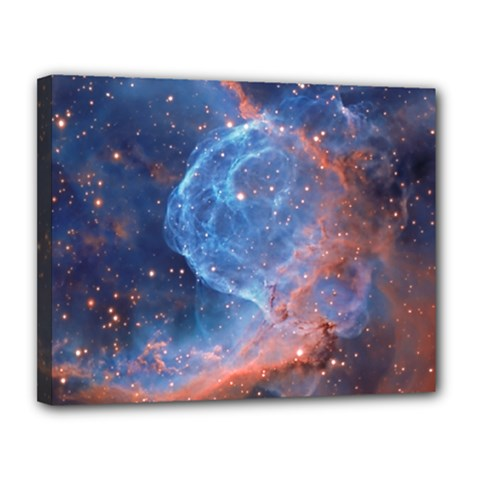 Thor s Helmet Canvas 14  X 11