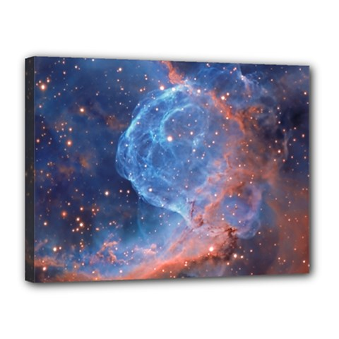 Thor s Helmet Canvas 16  X 12
