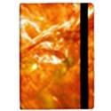 SOLAR FLARE 2 iPad Mini 2 Flip Cases View2
