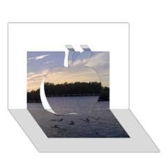 Intercoastal Seagulls 3 Apple 3d Greeting Card (7x5)