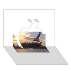 Intercoastal Seagulls 4 Apple 3d Greeting Card (7x5)