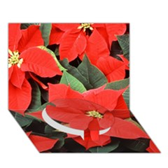 Poinsettia Circle Bottom 3d Greeting Card (7x5)