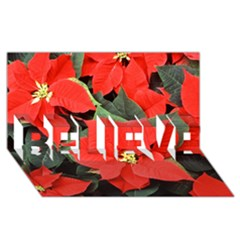 Poinsettia Believe 3d Greeting Card (8x4)