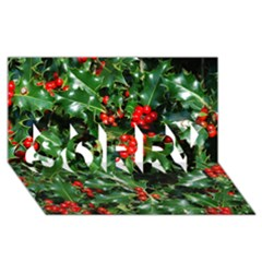 Holly 2 Sorry 3d Greeting Card (8x4)