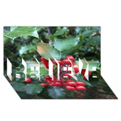 Holly 1 Believe 3d Greeting Card (8x4)