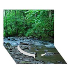 Rocky Stream Circle Bottom 3d Greeting Card (7x5)