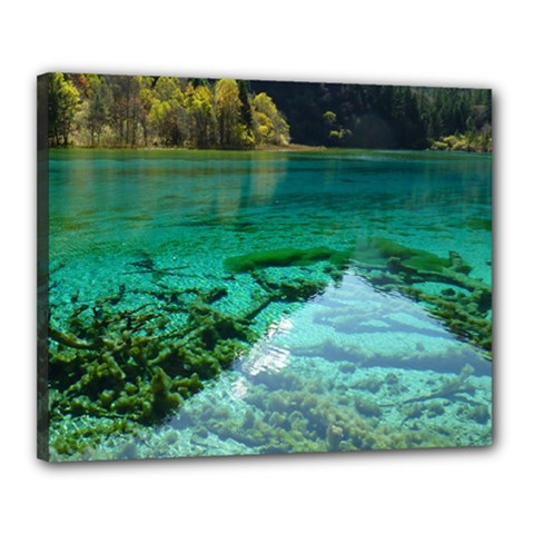 JIUZHAIGOU VALLEY 2 Canvas 20  x 16  by trendistuff