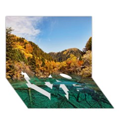 Jiuzhaigou Valley 1 Love Bottom 3d Greeting Card (7x5)  by trendistuff