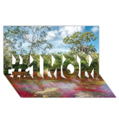 Cano Cristales 3 #1 Mom 3d Greeting Cards (8x4)