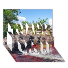 Cano Cristales 2 Thank You 3d Greeting Card (7x5)