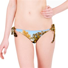 Autumn Lake Bikini Bottoms by trendistuff