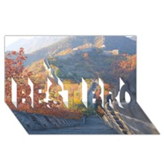 Great Wall Of China 1 Best Bro 3d Greeting Card (8x4)  by trendistuff