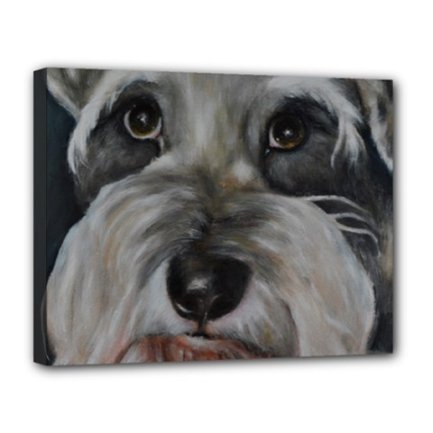 The Schnauzer Canvas 14  X 11  by timelessartoncanvas