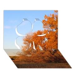 Beautiful Autumn Day Clover 3d Greeting Card (7x5)
