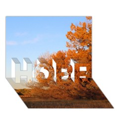 Beautiful Autumn Day Hope 3d Greeting Card (7x5)  by trendistuff
