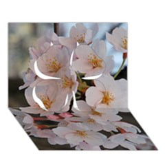 Sakura Clover 3d Greeting Card (7x5)  by trendistuff