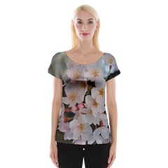 Sakura Women s Cap Sleeve Top by trendistuff