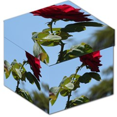 Red Rose 2 Storage Stool 12   by trendistuff