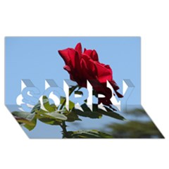 Red Rose 2 Sorry 3d Greeting Card (8x4)  by trendistuff