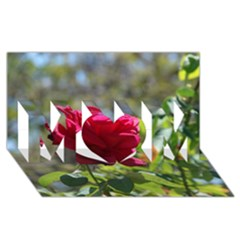 Red Rose 1 Mom 3d Greeting Card (8x4)  by trendistuff