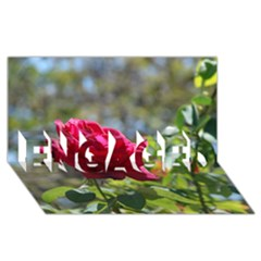 Red Rose 1 Engaged 3d Greeting Card (8x4)  by trendistuff