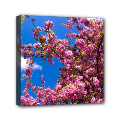 Pink Flowers Mini Canvas 6  X 6  by trendistuff