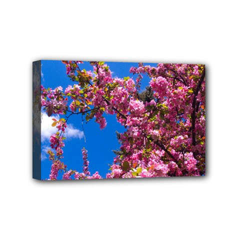 Pink Flowers Mini Canvas 6  X 4  by trendistuff