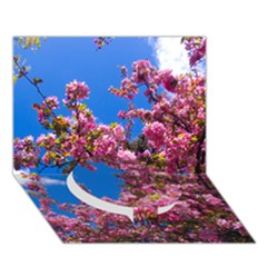 Pink Flowers Circle Bottom 3d Greeting Card (7x5)