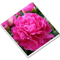 Paeonia Eleanor Small Memo Pads by trendistuff