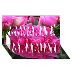 Paeonia Eleanor Congrats Graduate 3d Greeting Card (8x4)  by trendistuff