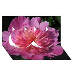 Paeonia Coral Twin Hearts 3d Greeting Card (8x4)