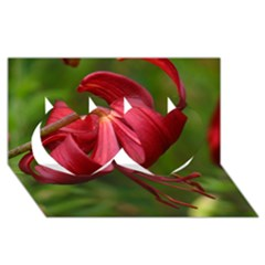 Lilium Red Velvet Twin Hearts 3d Greeting Card (8x4)  by trendistuff