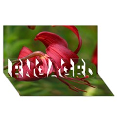 Lilium Red Velvet Engaged 3d Greeting Card (8x4)  by trendistuff