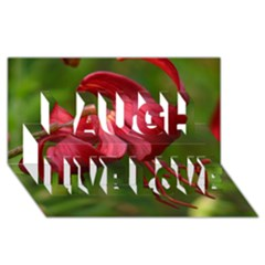 Lilium Red Velvet Laugh Live Love 3d Greeting Card (8x4)  by trendistuff