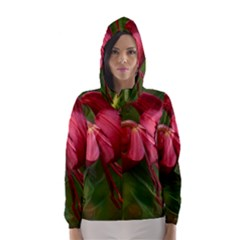 LILIUM RED VELVET Hooded Wind Breaker (Women)