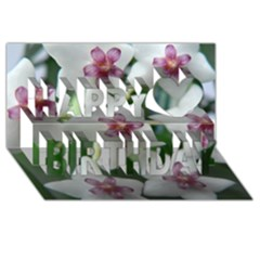 Hoyabella Happy Birthday 3d Greeting Card (8x4)  by trendistuff