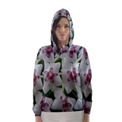 HOYABELLA Hooded Wind Breaker (Women)
