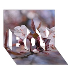 Cherry Blossoms Boy 3d Greeting Card (7x5) by trendistuff