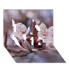 Cherry Blossoms Love 3d Greeting Card (7x5)  by trendistuff