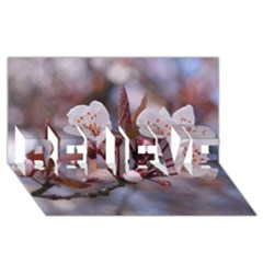 Cherry Blossoms Believe 3d Greeting Card (8x4)  by trendistuff