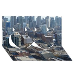 Chicago Twin Hearts 3d Greeting Card (8x4)