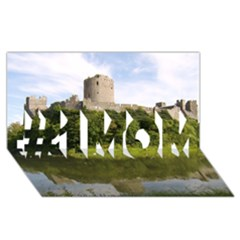 Pembroke Castle #1 Mom 3d Greeting Cards (8x4)