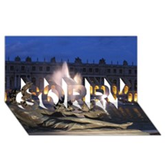 Palace Of Versailles 2 Sorry 3d Greeting Card (8x4)  by trendistuff