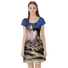 Palace Of Versailles 2 Short Sleeve Skater Dresses by trendistuff