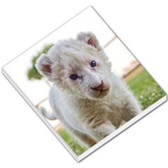 White Lion Cub Small Memo Pads