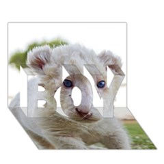 White Lion Cub Boy 3d Greeting Card (7x5)
