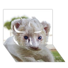 White Lion Cub Clover 3d Greeting Card (7x5)  by trendistuff