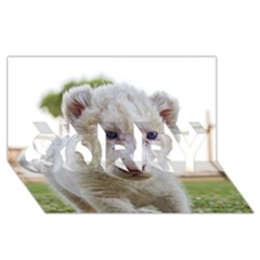 White Lion Cub Sorry 3d Greeting Card (8x4)