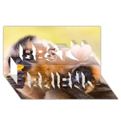 Two Monkeys Best Friends 3d Greeting Card (8x4)